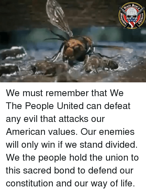 Life, Memes, and American: 1773 We must remember that We The People United can defeat any evil that attacks our American values. Our enemies will only win if we stand divided. We the people hold the union to this sacred bond to defend our constitution and our way of life.