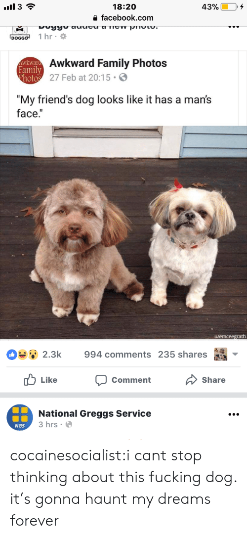 """Family Photos: 18:20  a facebook.com  DOGGO 1 hr  Awkward Family Photos  27 Feb at 20:15.  Family  """"My friend's dog looks like it has a man's  face.""""  u/emceegrath  OSsǐ 2.3k  994 comments 235 shares as  山Like  Share  Comment  National Greggs Service  3 hrs.  NGS cocainesocialist:i cant stop thinking about this fucking dog. it's gonna haunt my dreams forever"""