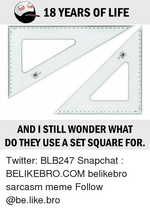 Be Like, Life, and Meme: 18 YEARS OF LIFE  AND I STILL WONDER WHAT  DO THEY USE A SETSQUARE FOR. Twitter: BLB247 Snapchat : BELIKEBRO.COM belikebro sarcasm meme Follow @be.like.bro