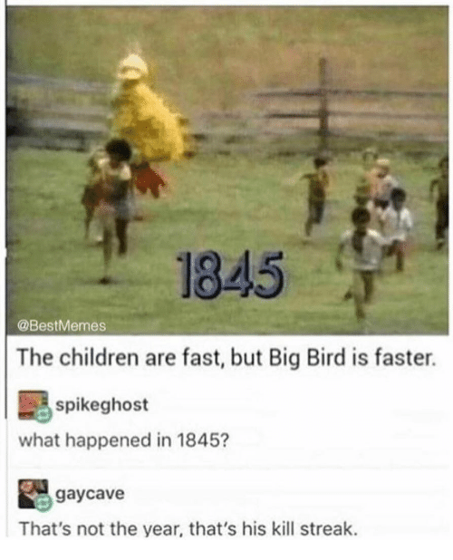 Kill Streak: 1845  @BestMemes  The children are fast, but Big Bird is faster.  spikeghost  what happened in 1845?  gaycave  That's not the year, that's his kill streak.
