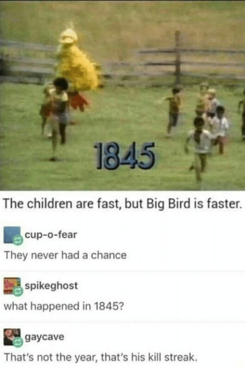Children, Memes, and Big Bird: 1845  The children are fast, but Big Bird is faster.  cup-o-fear  They never had a chance  spikeghost  what happened in 1845?  鼳gaycave  That's not the year, that's his kill streak.