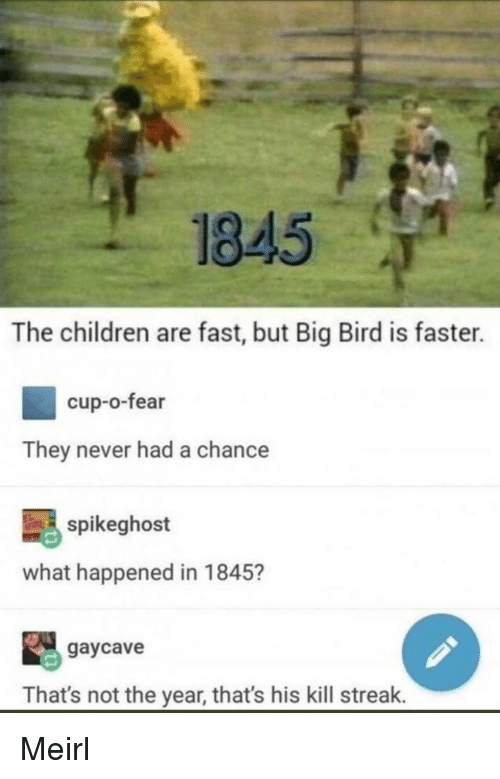 Kill Streak: 1845  The children are fast, but Big Bird is faster.  cup-o-fear  They never had a chance  spikeghost  what happened in 1845?  gaycave  That's not the year, that's his kill streak. Meirl
