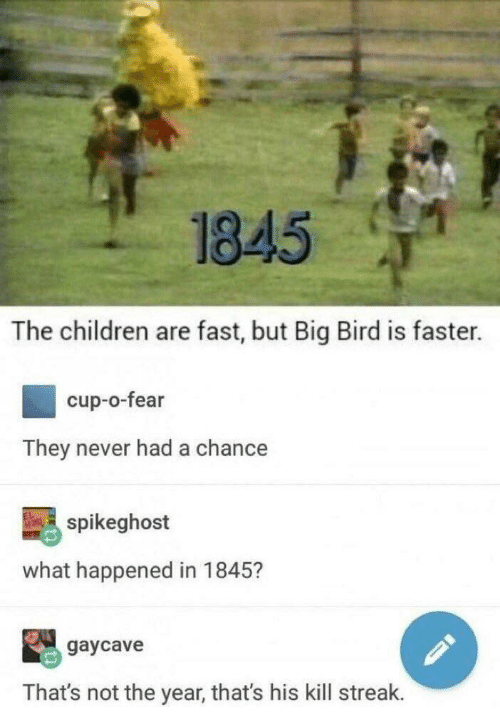 Kill Streak: 1845  The children are fast, but Big Bird is faster.  cup-o-fear  They never had a chance  spikeghost  what happened in 1845?  gaycave  That's not the year, that's his kill streak.