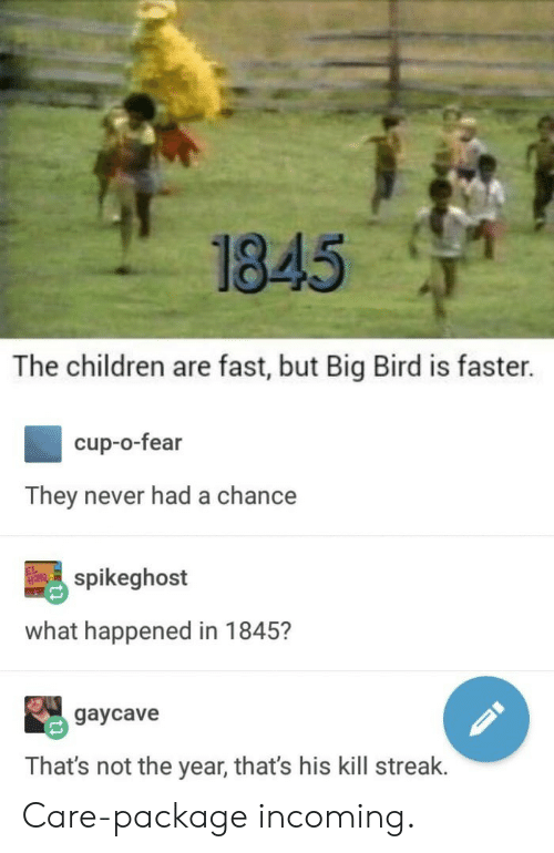 Kill Streak: 1845  The children are fast, but Big Bird is faster.  cup-o-fear  They never had a chance  spikeghost  what happened in 1845?  gaycave  That's not the year, that's his kill streak. Care-package incoming.
