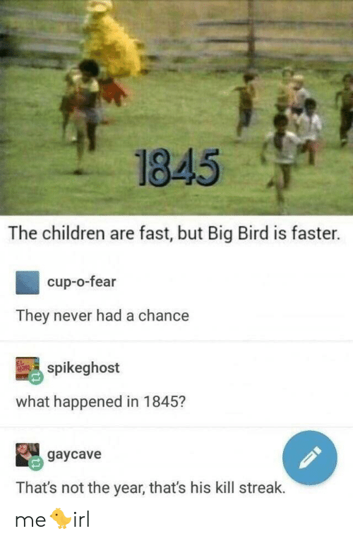 Kill Streak: 1845  The children are fast, but Big Bird is faster.  cup-o-fear  They never had a chance  spikeghost  what happened in 1845?  gaycave  That's not the year, that's his kill streak. me🐤irl