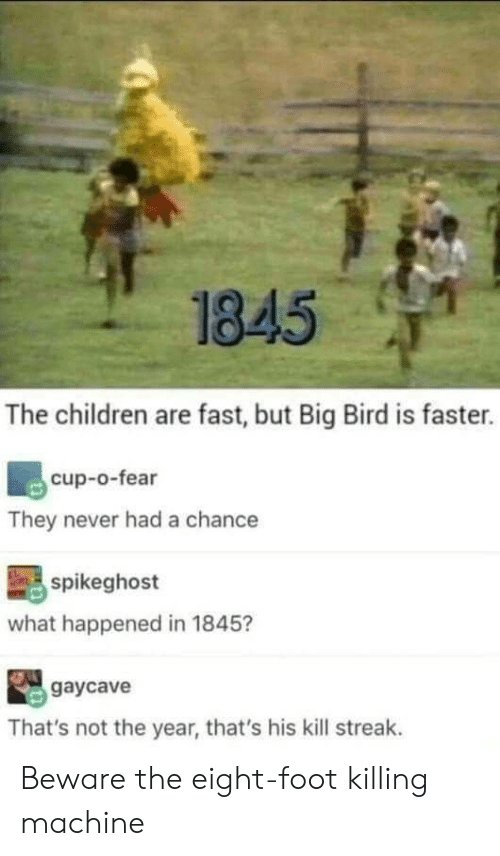 Kill Streak: 1845  The children are fast, but Big Bird is faster.  cup-o-fear  They never had a chance  spikeghost  what happened in 1845?  gaycave  That's not the year, that's his kill streak. Beware the eight-foot killing machine