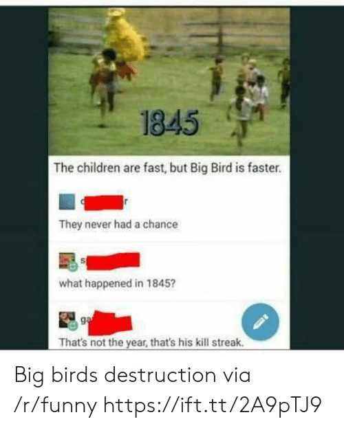 Kill Streak: 1845  The children are fast, but Big Bird is faster.  They never had a chance  what happened in 1845?  That's not the year, that's his kill streak. Big birds destruction via /r/funny https://ift.tt/2A9pTJ9