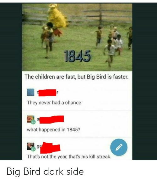 Kill Streak: 1845  The children are fast, but Big Bird is faster.  They never had a chance  what happened in 1845?  That's not the year, that's his kill streak. Big Bird dark side