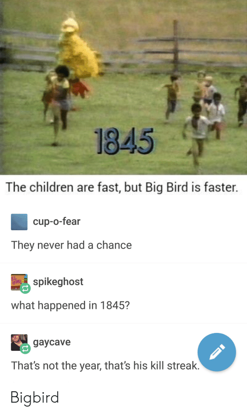 Kill Streak: 1845  The children are fast, but Big Bird is faster.  cup-o-fear  They never had a chance  spikeghost  what happened in 1845?  gaycave  That's not the year, that's his kill streak. Bigbird