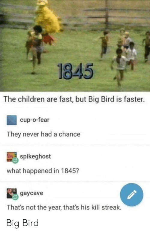 Kill Streak: 1845  The children are fast, but Big Bird is faster.  cup-o-fear  They never had a chance  spikeghost  what happened in 1845?  2gaycave  That's not the year, that's his kill streak. Big Bird