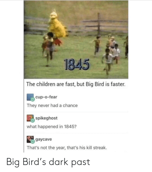 Kill Streak: 1845  The children are fast, but Big Bird is faster.  cup-o-fear  They never had a chance  spikeghost  what happened in 1845?  gaycave  That's not the year, that's his kill streak. Big Bird's dark past