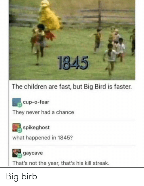 Kill Streak: 1845  The children are fast, but Big Bird is faster.  cup-o-fear  They never had a chance  spikeghost  what happened in 1845?  gaycave  That's not the year, that's his kill streak. Big birb
