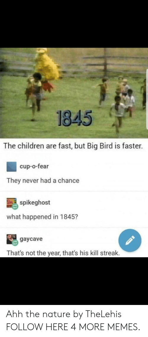 Kill Streak: 1845  The children are fast, but Big Bird is faster.  cup-o-fear  They never had a chance  吗spikeghost  what happened in 1845?  gaycave  That's not the year, that's his kill streak. Ahh the nature by TheLehis FOLLOW HERE 4 MORE MEMES.