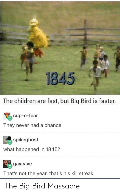 Kill Streak: 1845  The children are fast, but Big Bird is faster.  cup-o-fear  They never had a chance  spikeghost  what happened in 1845?  gaycave  That's not the year, that's his kill streak. The Big Bird Massacre