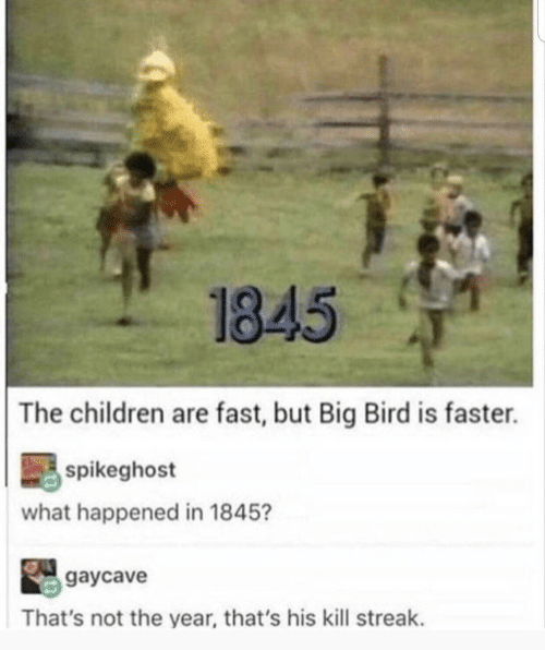 Kill Streak: 1845  The children are fast, but Big Bird is faster.  spikeghost  what happened in 1845?  gaycave  That's not the year, that's his kill streak.
