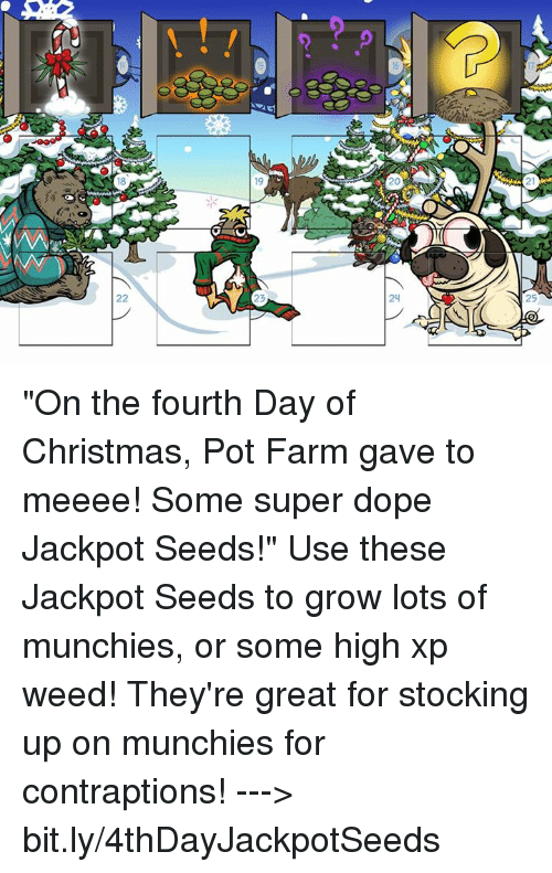 "pot: 19  22  24  5 ""On the fourth Day of Christmas, Pot Farm gave to meeee! Some super dope Jackpot Seeds!""   Use these Jackpot Seeds to grow lots of munchies, or some high xp weed! They're great for stocking up on munchies for contraptions!  ---> bit.ly/4thDayJackpotSeeds"
