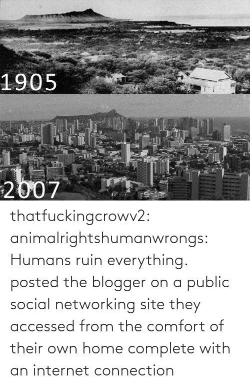 An Internet: 1905  2007 thatfuckingcrowv2:  animalrightshumanwrongs:  Humans ruin everything.  posted the blogger on a public social networking site they accessed from the comfort of their own home complete with an internet connection