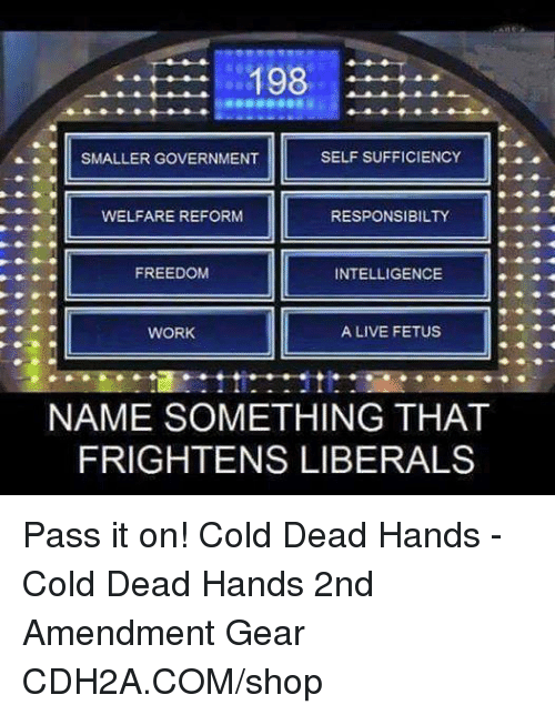 Name Something That: 198  SMALLER GOVERNMENT  SELF SUFFICIENCY  WELFARE REFORM  RESPONSIBILTY  FREEDOM  INTELLIGENCE  WORK  A LIVE FETUS  NAME SOMETHING THAT  FRIGHTENS LIBERALS Pass it on! Cold Dead Hands - Cold Dead Hands 2nd Amendment Gear CDH2A.COM/shop