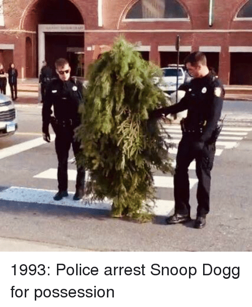 snoop dogg: 1993: Police arrest Snoop Dogg for possession