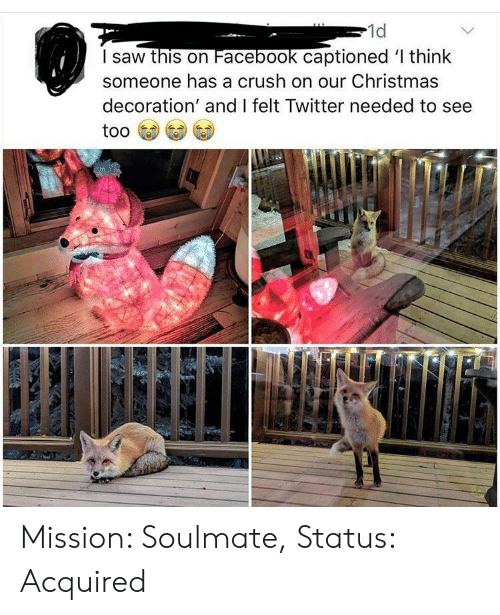 Captioned: 1d  I saw this on Facebook captioned l think  someone has a crush on our Christmas  decoration' and I felt Twitter needed to see Mission: Soulmate, Status: Acquired