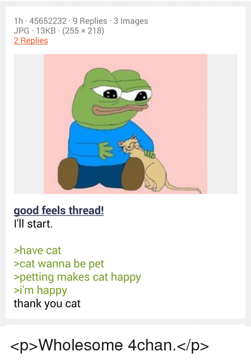 4chan: 1h 45652232 9 Replies 3 Images  JPG 13KB (255 x 218)  2 Replies  good feels thread!  I'll start.  >have cat  >cat wanna be pet  petting makes cat happy  i'm happy  thank you cat <p>Wholesome 4chan.</p>