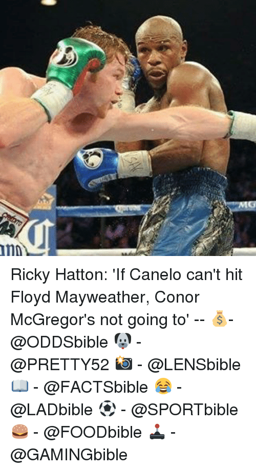 Floyd Mayweather, Mayweather, and Memes: 1m Ricky Hatton: 'If Canelo can't hit Floyd Mayweather, Conor McGregor's not going to' -- 💰- @ODDSbible 🐶 - @PRETTY52 📸 - @LENSbible 📖 - @FACTSbible 😂 - @LADbible ⚽ - @SPORTbible 🍔 - @FOODbible 🕹 - @GAMINGbible