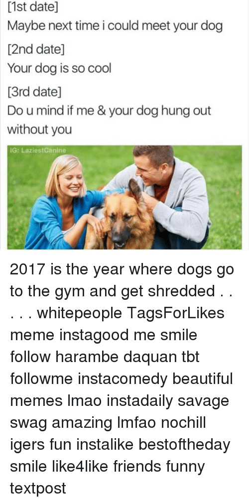 Daquan, Funny, and Gym: [1st date]  Maybe next time i could meet your dog  12nd date]  Your dog is so cool  13rd datel  Do u mind if me & your dog hung out  without you  IG: LaziestCanine 2017 is the year where dogs go to the gym and get shredded . . . . . whitepeople TagsForLikes meme instagood me smile follow harambe daquan tbt followme instacomedy beautiful memes lmao instadaily savage swag amazing lmfao nochill igers fun instalike bestoftheday smile like4like friends funny textpost