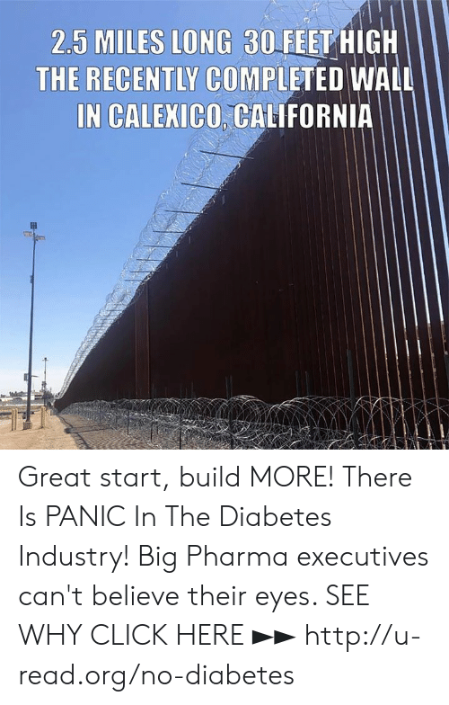 Pharma: 2.5 MILES LONG 30FEET HIGH  THE RECENTLY COMPLETED WALL  IN CALEXICO, CALIFORNIA Great start, build MORE!  There Is PANIC In The Diabetes Industry! Big Pharma executives can't believe their eyes. SEE WHY CLICK HERE ►► http://u-read.org/no-diabetes