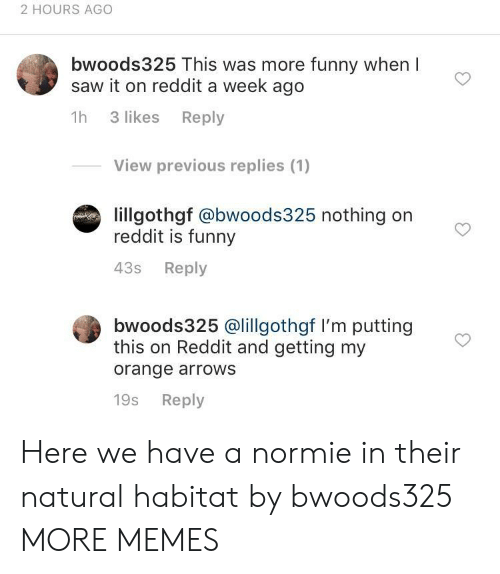 A Week Ago: 2 HOURS AGO  bwoods325 This was more funny when l  saw it on reddit a week ago  1h 3 likes Reply  View previous replies (1)  lillgothgf @bwoods325 nothing on  reddit is funny  43s Reply  bwoods325 @lillgothgf I'm putting  this on Reddit and getting my  orange arrows  19s Reply Here we have a normie in their natural habitat by bwoods325 MORE MEMES