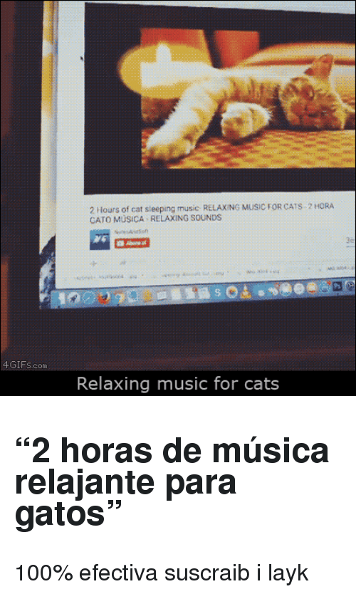 "Cato: 2 Hours of cat sieeping music RELAXING MUSIC FOR CATS 2 HORA  CATO MÜSICA RELAXING SOUNDS  4GIFs.com  Relaxing music for cats <h2>""2 horas de música relajante para gatos""</h2><p>100% efectiva suscraib i layk</p>"