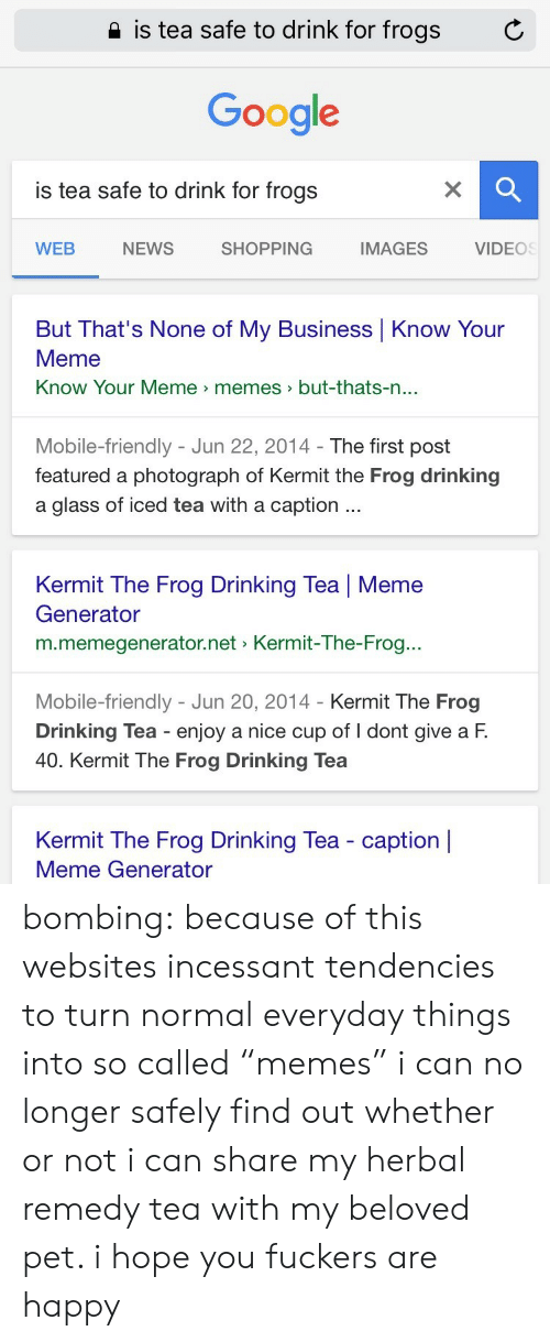 """Kermit the Frog: 2 is tea safe to drink for frogs  C  Google  is tea safe to drink for frogs  WEB  NEWS  SHOPPING  IMAGES  VIDEOS  But That's None of My Business Know Your  Meme  Know Your Meme memes>but-thats-n  ...  Mobile-friendly - Jun 22, 2014- The first post  featured a photograph of Kermit the Frog drinking  a glass of iced tea with a caption  Kermit The Frog Drinking Tea 