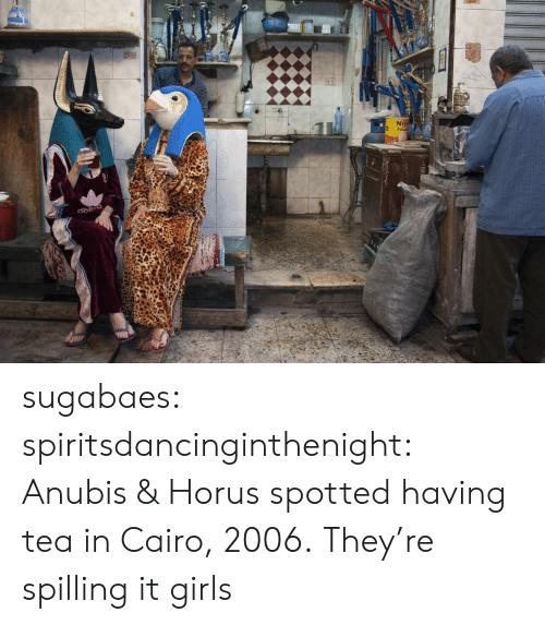 Nei: 2  NEI sugabaes: spiritsdancinginthenight:  Anubis & Horus spotted having tea in Cairo, 2006.    They're spilling it girls