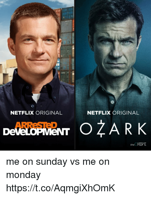 the chives: 2  NETFLIX ORIGINAL  NETFLIX ORIGINAL  ARReSTED  the CHIVE me on sunday vs me on monday https://t.co/AqmgiXhOmK