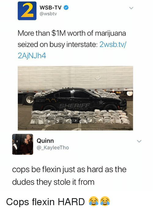 Funny, Marijuana, and Wsbtv: 2  WSB-TV  @wsbtv  More than $1M worth of marijuana  seized on busy interstate: 2wsb.tv/  2AjNJh4  Ie  ,, 서 서  SHERIFE  Quinn  ®_KayleeTho  cops be flexin just as hard as the  dudes they stole it from Cops flexin HARD 😂😂