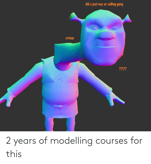 modelling: 2 years of modelling courses for this