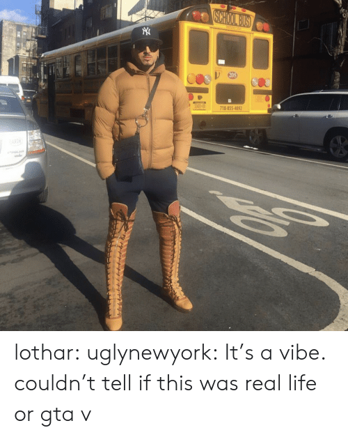 GTA V: 20  718-855-409 lothar: uglynewyork: It's a vibe. couldn't tell if this was real life or gta v