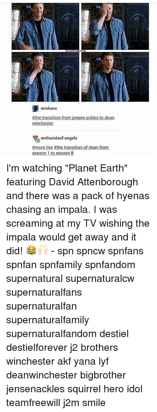 "Memes, Angels, and Earth: 20  mishaco  winc  onthesideof-angels  f dean fro I'm watching ""Planet Earth"" featuring David Attenborough and there was a pack of hyenas chasing an impala. I was screaming at my TV wishing the impala would get away and it did! 😂🙌🏻 - spn spncw spnfans spnfan spnfamily spnfandom supernatural supernaturalcw supernaturalfans supernaturalfan supernaturalfamily supernaturalfandom destiel destielforever j2 brothers winchester akf yana lyf deanwinchester bigbrother jensenackles squirrel hero idol teamfreewill j2m smile"