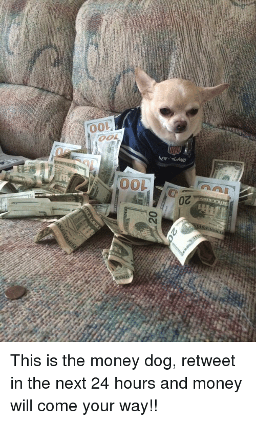 Hood and  Toes: 20  Toe  100  20 This is the money dog, retweet in the next 24 hours and money will come your way!!