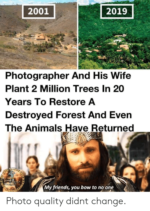 20 Years: 2001  2019  Photographer And His Wife  Plant 2 Million Trees In 20  Years To Restore A  Destroyed Forest And Even  The Animals Have Returned  RIXS  LORdNGS  Shzeporiang  My friends, you bow to no one  IR  203 Photo quality didnt change.