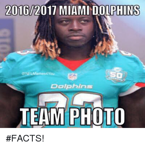 2016 2017 miami dolphins su nel emes4yo dolphins team photo facts 19064016 🔥 25 best memes about miami dolphins miami dolphins memes