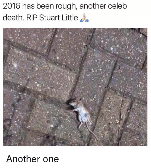 Another One, Another One, and Dank: 2016 has been rough, another celeb  death. RIP Stuart Little Another one