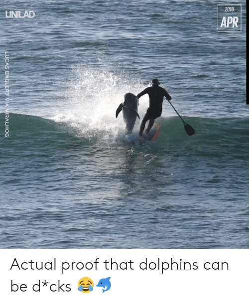 lucas: 2018  UNILAD  APR  LUCAS ENGLERT VIA VIRALHOG Actual proof that dolphins can be d*cks 😂🐬