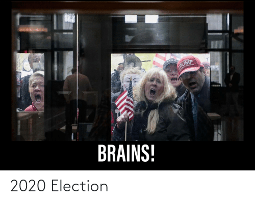 election: 2020 Election