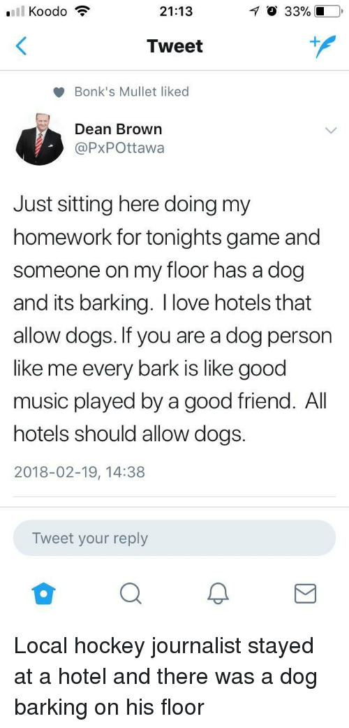 Just Sitting Here: 21:13  O 33% 10  Tweet  Bonk's Mullet liked  Dean Brown  @PxPOttawa  Just sitting here doing my  homework for tonights game and  someone on my floor has a dog  and its barking. I love hotels that  allow dogs. If you are a dog person  like me every bark is like good  music played by a good friend. All  hotels should allow dogs.  2018-02-19, 14:38  Tweet your reply <p>Local hockey journalist stayed at a hotel and there was a dog barking on his floor</p>