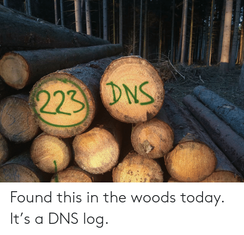 log: 223 DNS Found this in the woods today. It's a DNS log.