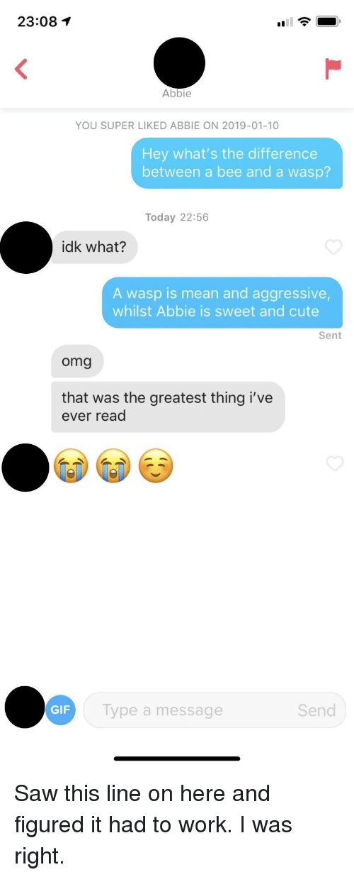 Whats The Difference: 23:08  Abbie  YOU SUPER LIKED ABBIE ON 2019-01-10  Hey what's the difference  between a bee and a wasp?  Today 22:56  idk what?  A wasp is mean and aggressive  whilst Abbie is sweet and cute  Sent  omg  that was the greatest thing i've  ever read  GIF  Type a message  Send Saw this line on here and figured it had to work. I was right.
