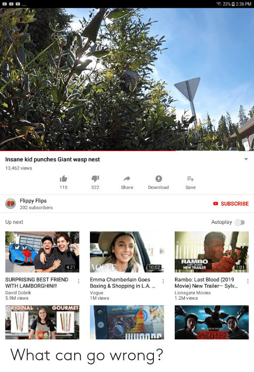 wasp nest: 23%2:36 PM  Insane kid punches Giant wasp nest  13,462 views  Share  Download  115  322  Save  Flippy Flips  OSUBSCRIBE  202 subscribers  Up next  Autoplay  RAMBO  NEW TRAILER  10:02  4:21  1:01  Rambo: Last Blood (2019  Movie) New Trailer- Sylv...  Lionsgate Movies  1.2M views  SURPRISING BEST FRIEND  Emma Chamberlain Goes  WITH LAMBORGHIN!!  Boxing & Shopping in L.A...  David Dobrik  Vogue  1M views  5.9M views  ORIGINAL  GOURMET  SIMNNEY What can go wrong?