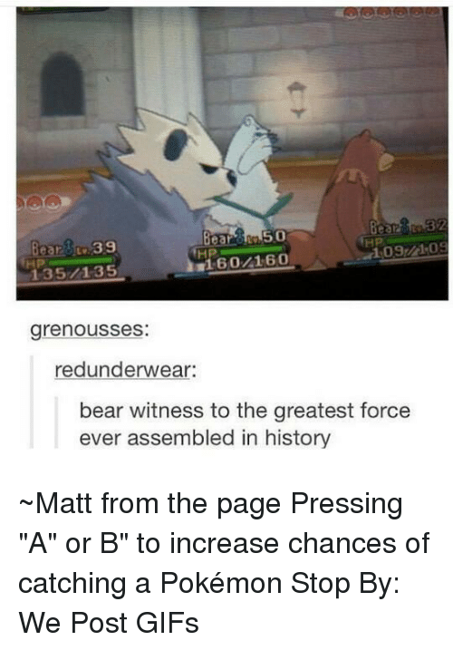 """Dank, Pokemon, and Bear: 2339  135/1-35  HP  HP  grenousses:  redunderwear:  bear witness to the greatest force  ever assembled in history ~Matt from the page Pressing """"A"""" or B"""" to increase chances of catching a Pokémon Stop By: We Post GIFs"""