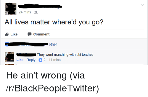 All Lives Matter: 24 mins .  All lives matter where'd you go?  Like Comment  . , other  They went marching with tiki torches  Like Reply 2-11 mins <p>He ain&rsquo;t wrong (via /r/BlackPeopleTwitter)</p>