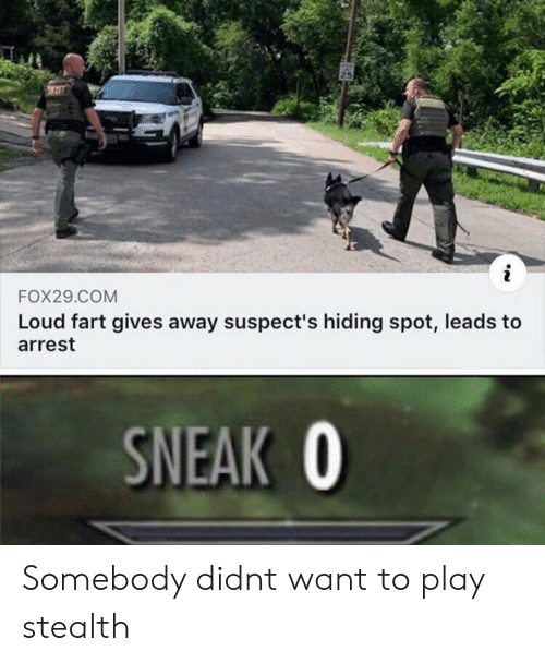 stealth: 25  i  FOX29.COM  Loud fart gives away suspect's hiding spot, leads to  arrest  SNEAK O Somebody didnt want to play stealth